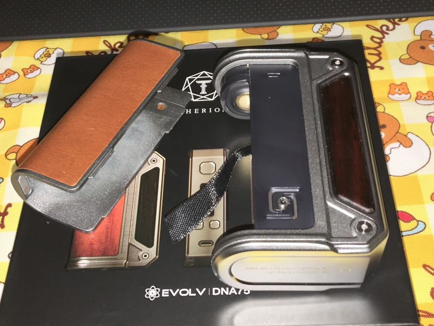 Therion DNA75_08