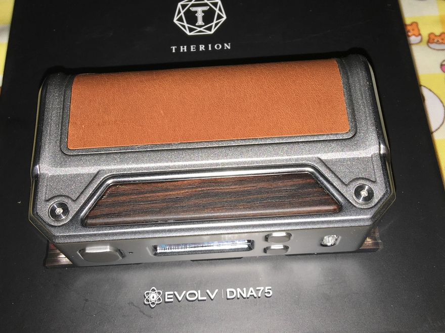 Therion DNA75_13